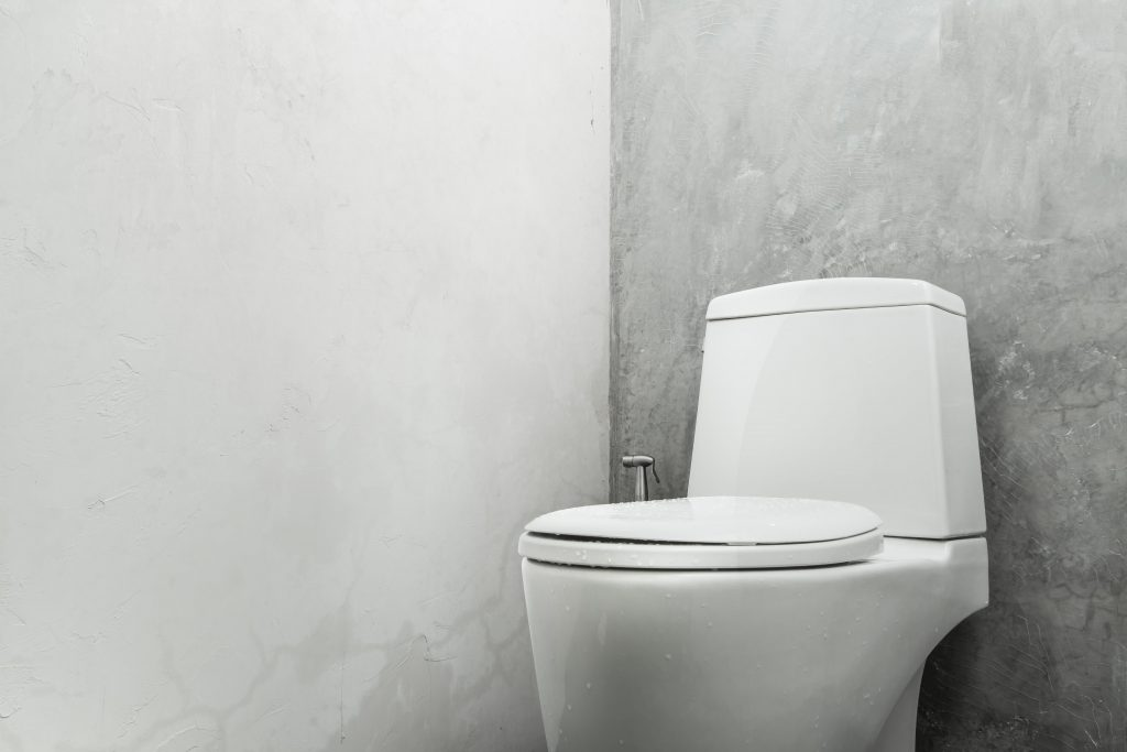 Toilet Seat Install In London By Handyman Handy Squad