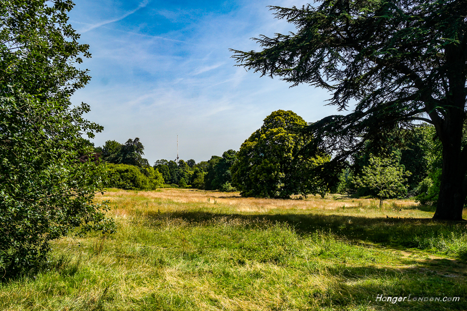 Gunnersbury Park vast amount of land