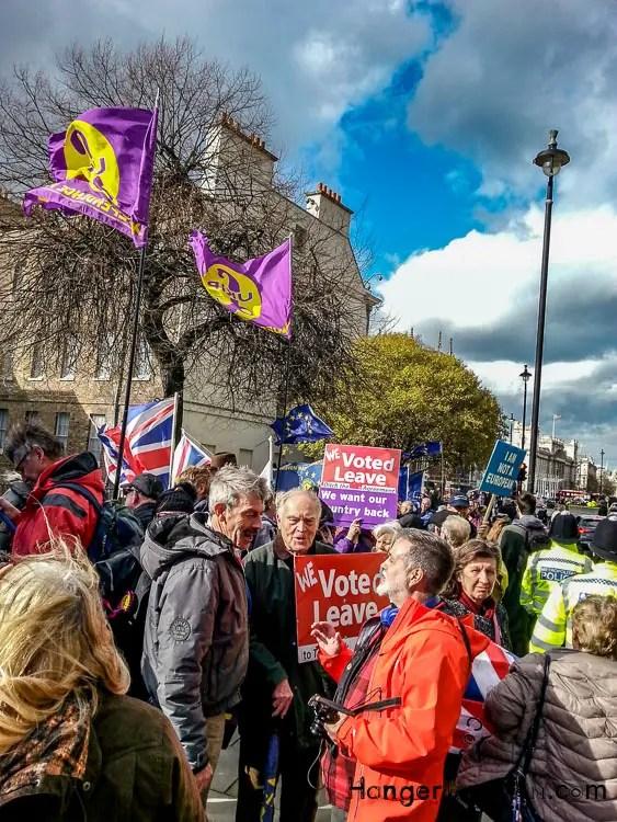 mixed brexit protestors