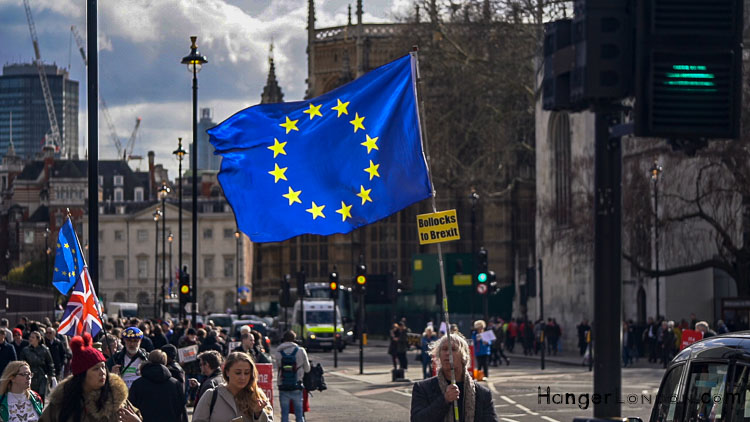 Brexit Culture flags and signs of our times 1
