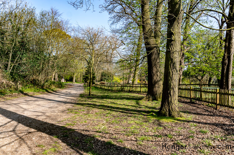 Walk in the woods part of Holland Parks extensive landscape