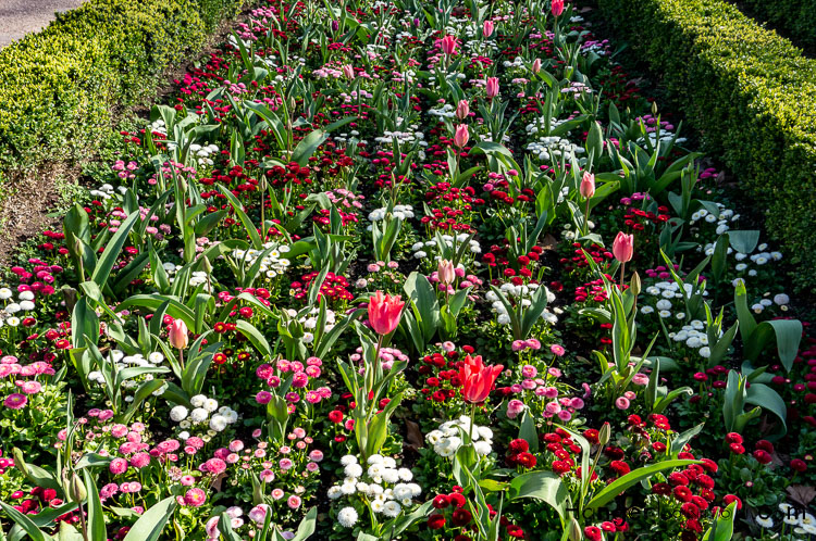 Flower Bed section of the Dutch Garden Holland Park