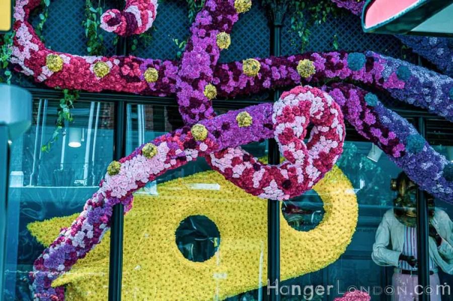 Chelsea in bloom Hackett 3