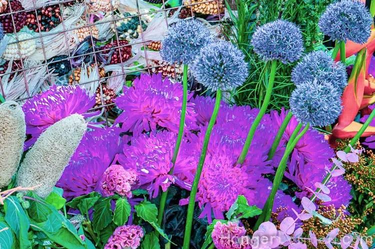 Chelsea in bloom vibrant chive