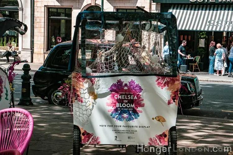 Chelsea in bloom bike cart-Edit