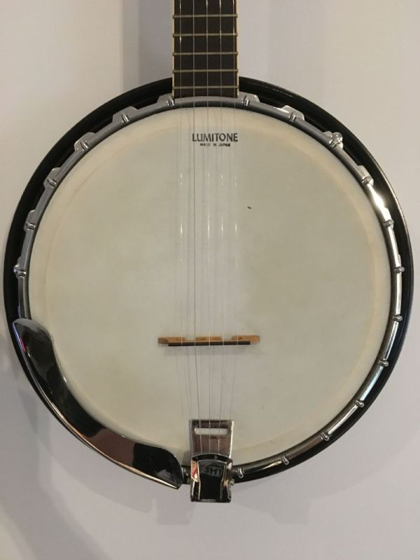 20+ Banjo Identification Pictures and Ideas on Meta Networks