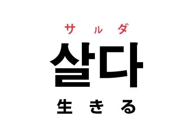 韓国語の「살다 サルダ(生きる)」を覚える!
