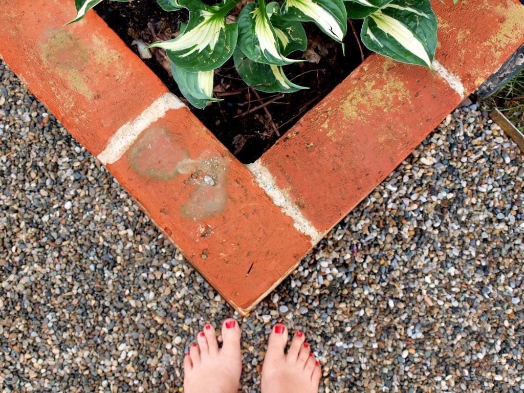 Gartengestaltung step by step