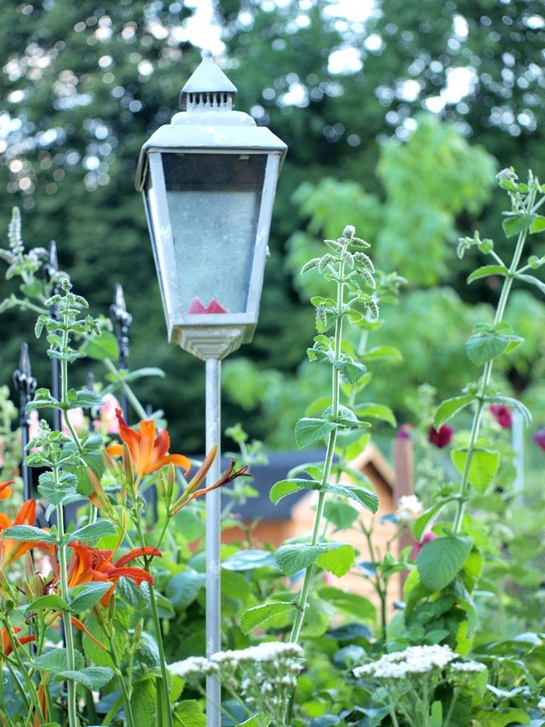 Laterne im Blumenmeer