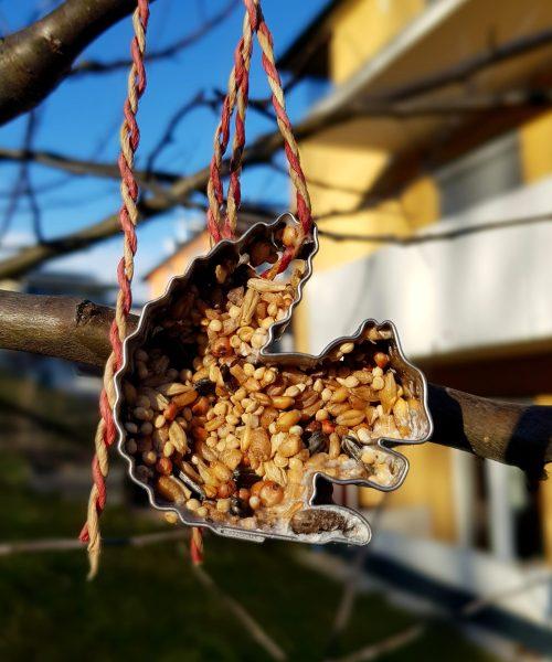 Stimmt das Futter auf die tierischen Besucher eures Gartens ab