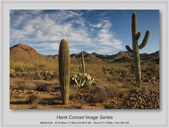Think Warm Desert
