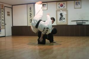 ko baek-yong - about