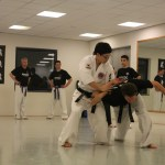 ijsselstein hapkido adults