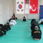 istanbul hankido seminar