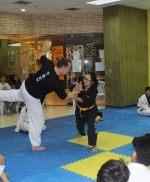 2018 Hankido Seminars