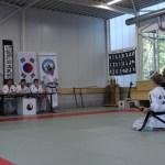 hankido test