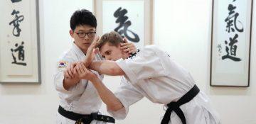 hankido seminar