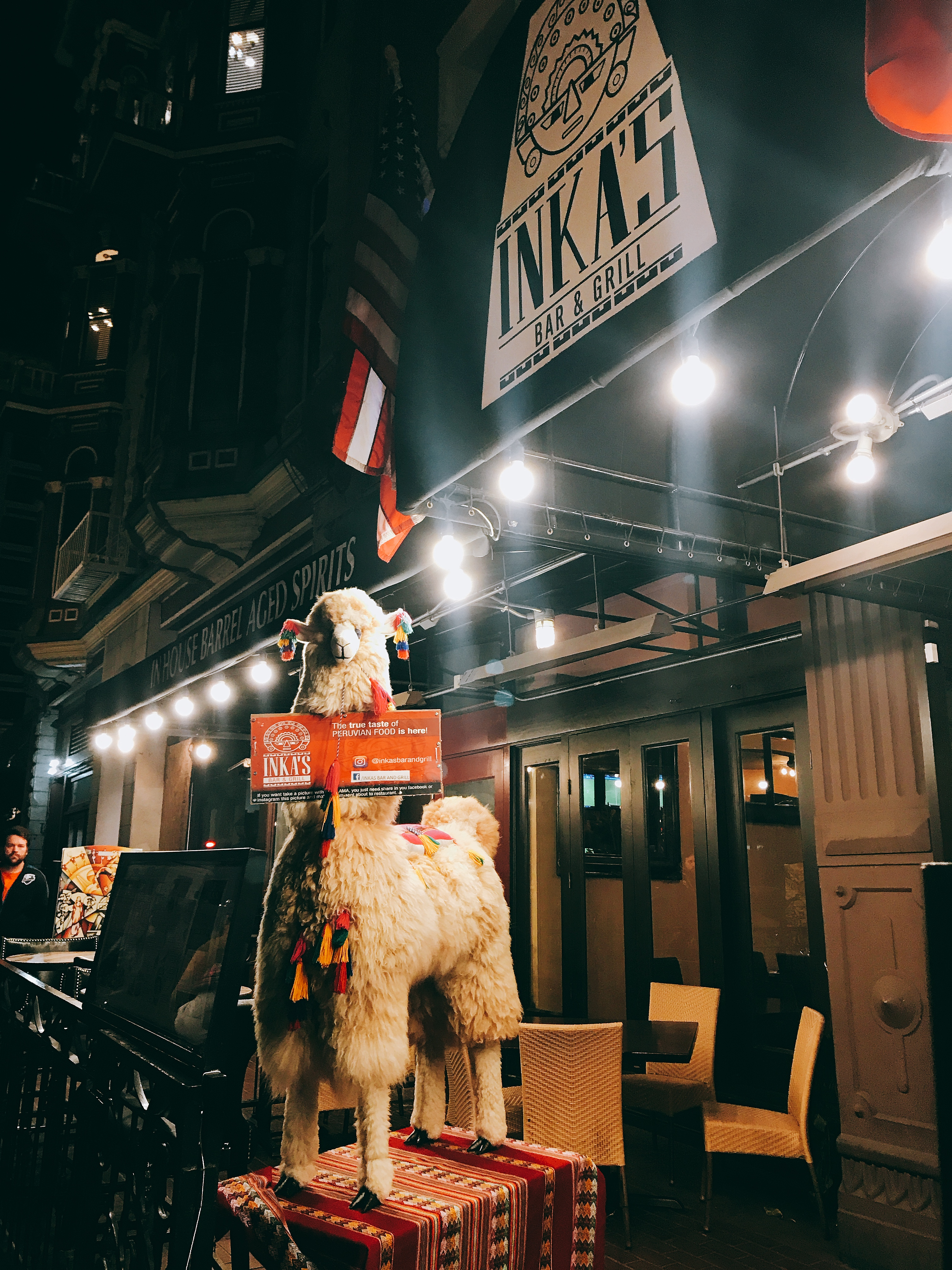 IMG 2010 - One of the Coolest Backpacker Hostel in San Diego!