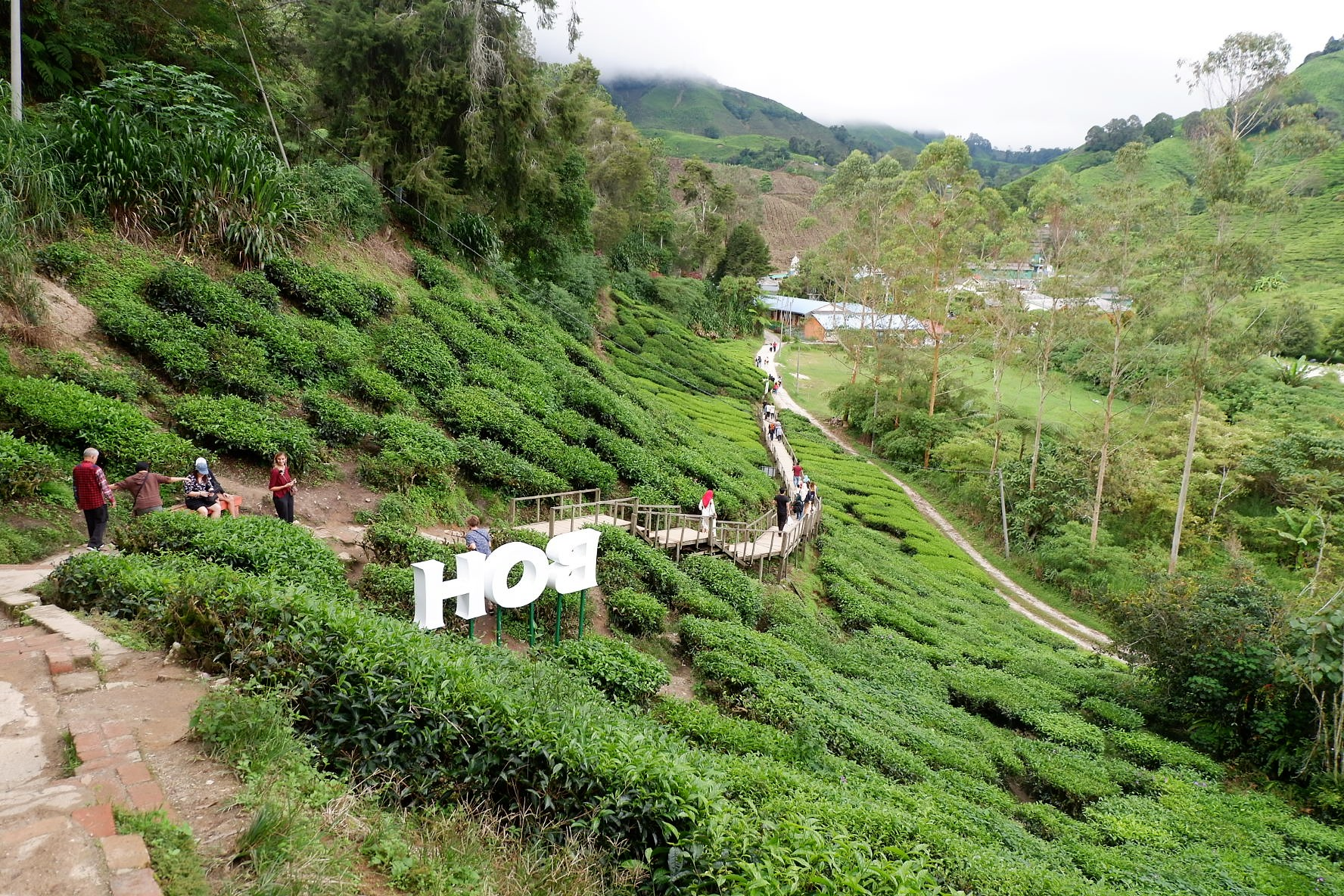 IMG 5237 - A Getaway in Cameron Highlands that will gives you more than you deserve!