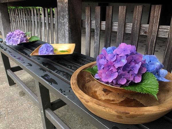 202006奈良・般若寺。本堂脇の紫色のあじさいもキレイ