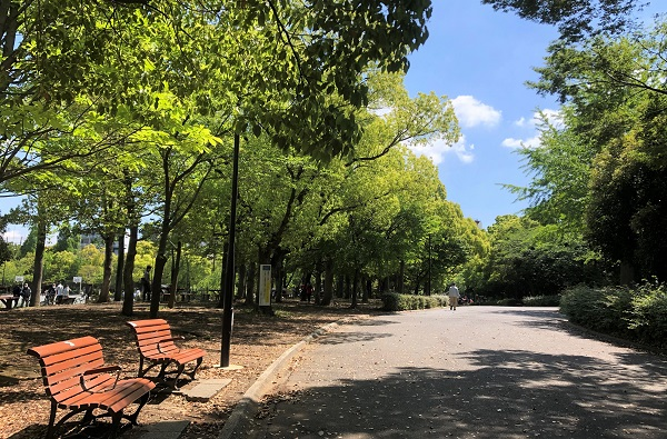 202105江東区・木場公園の新緑