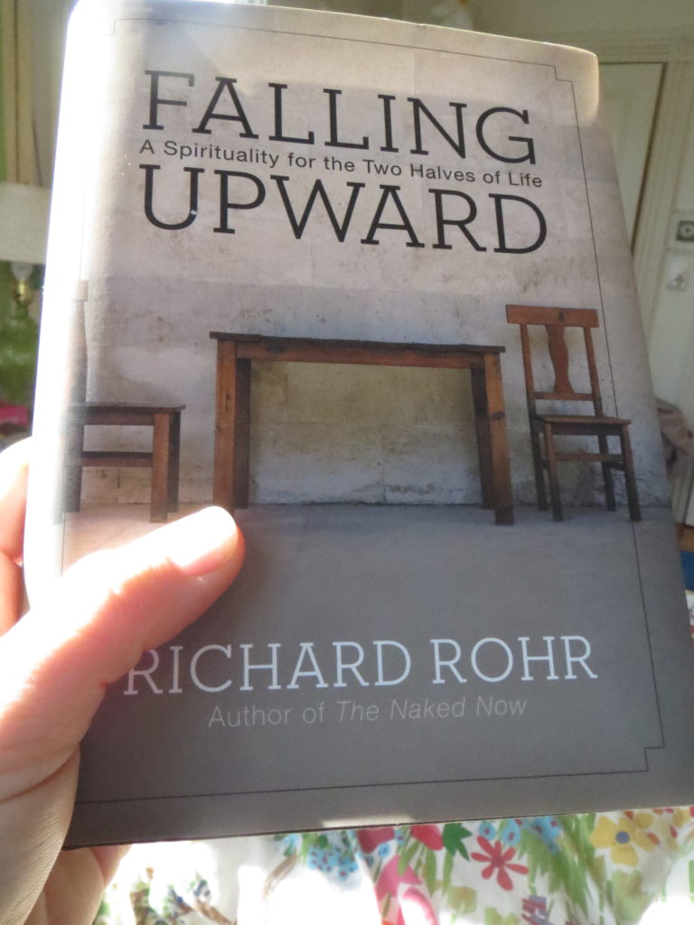 Richard Rohr's Falling Upward
