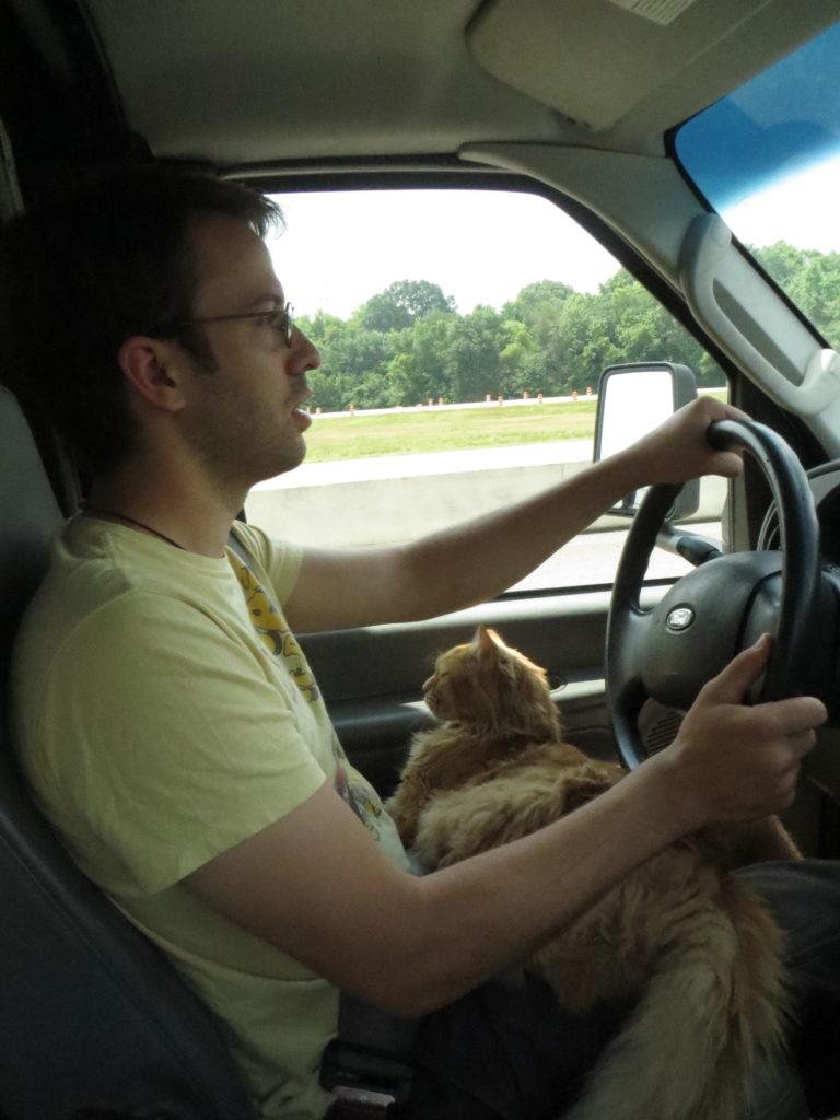 trucker cat!