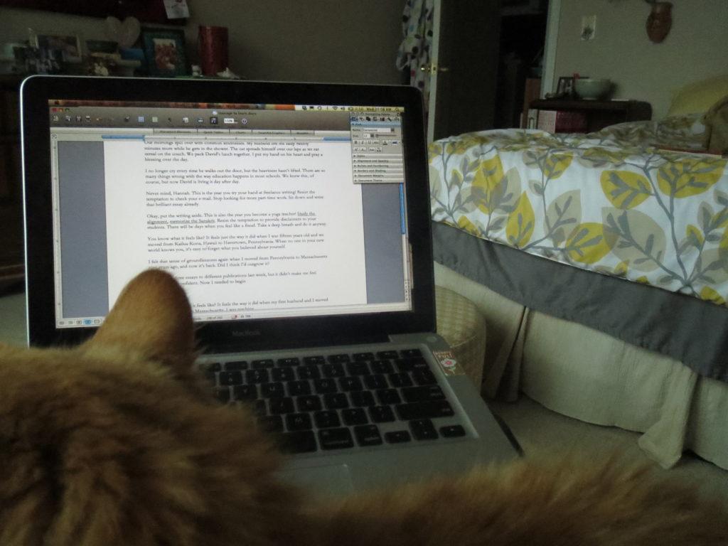 essay in progress