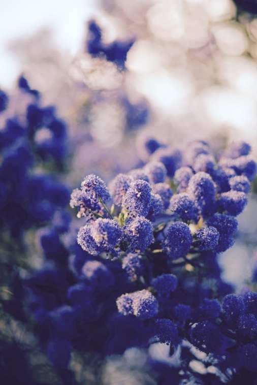 14_Summer
