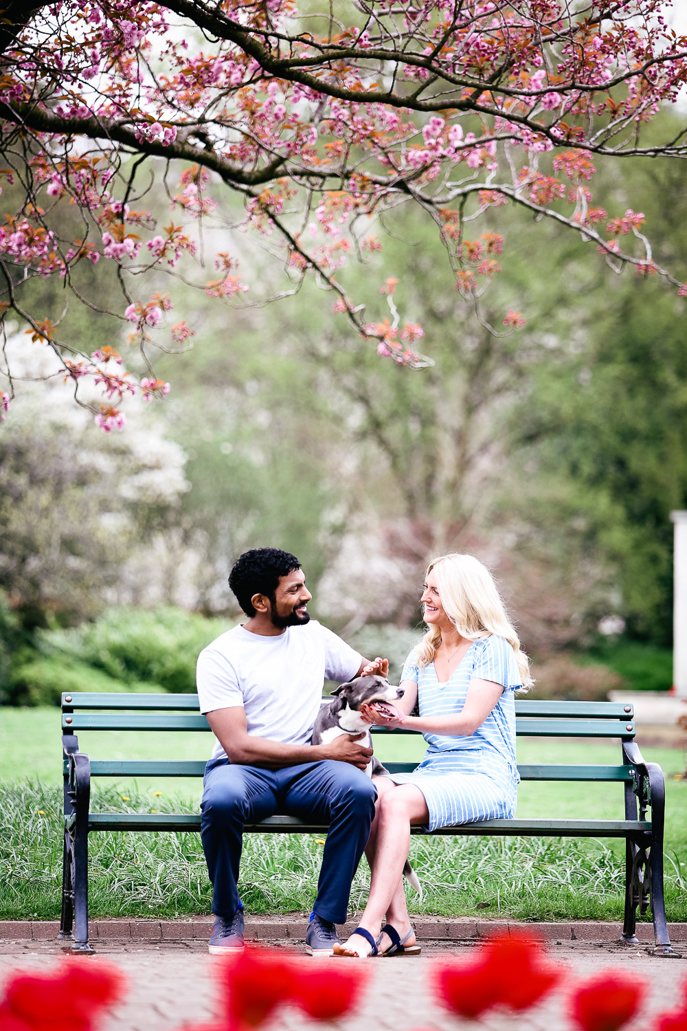 engagement portraits with dog - hannah timm photography