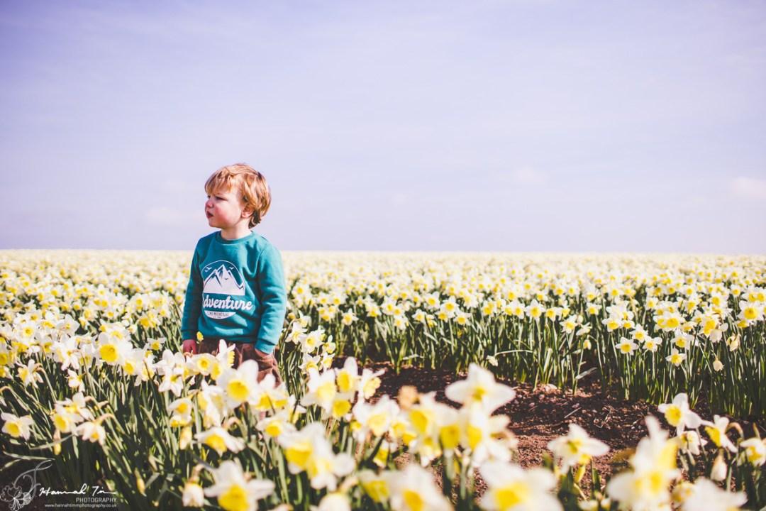 flower field portraits