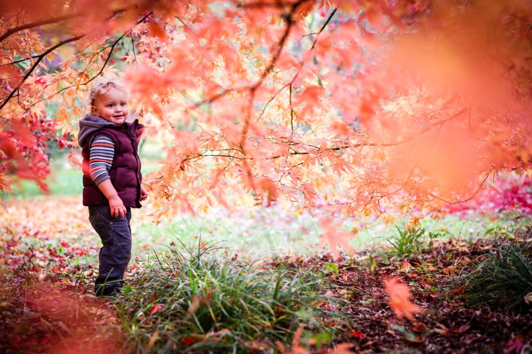 colourful family photography