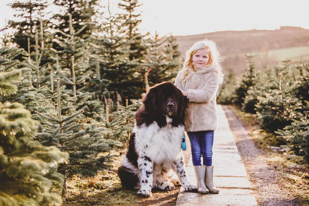 family photography liskeard