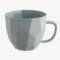 Habitat faceted mug