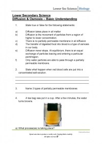 Osmosis Diffusion Worksheet Free Worksheets Library ...