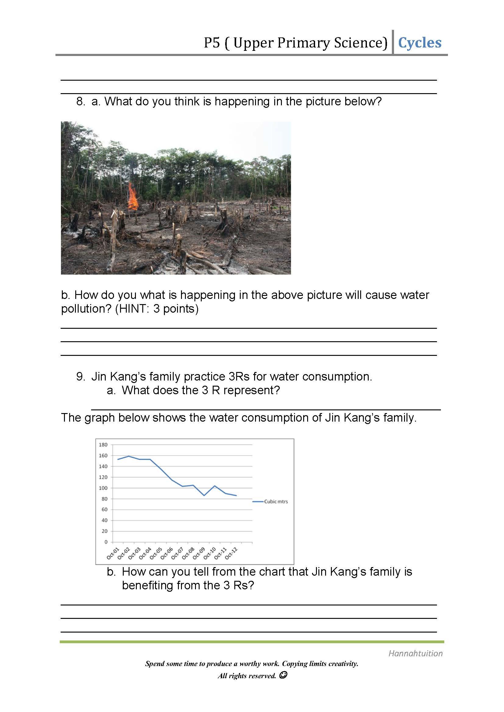 P5 Science Water Cycles Worksheet