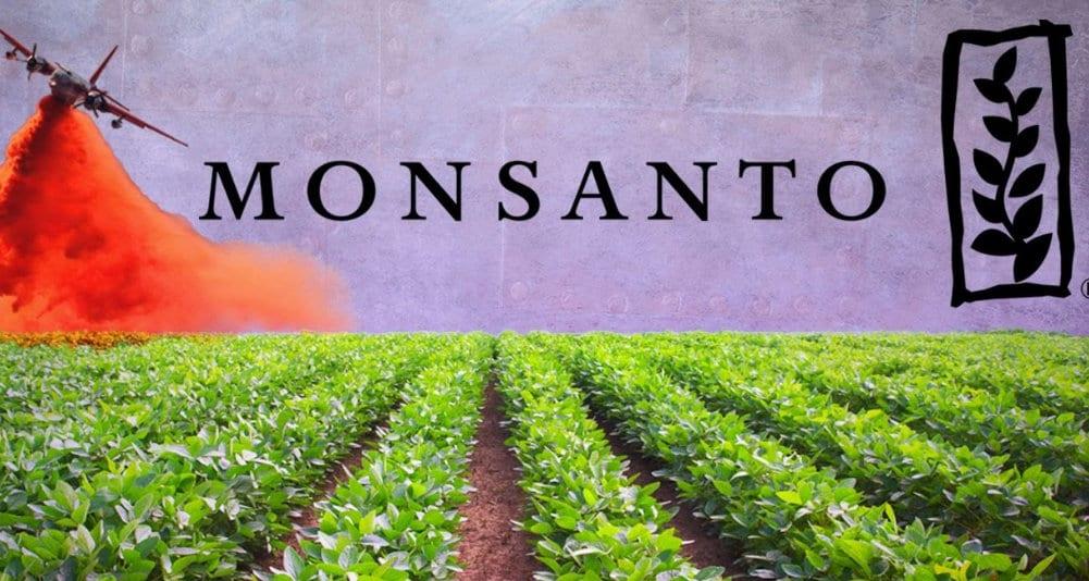 Monsanto Herland Report