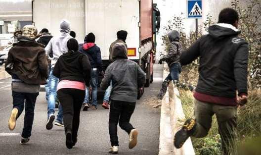 Callais immigrant crisis Herland Report
