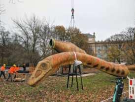 Kopf und Rumpf des Seismosaurus