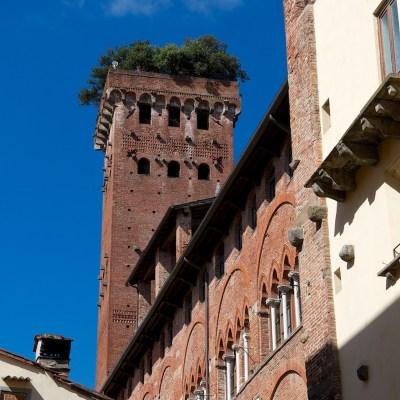 Torre dei Guinigi, Lucca