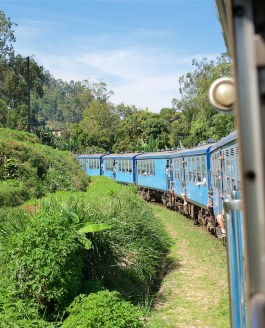 Met de trein van Ella naar Hatton