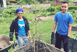 Photo: Young people gardening