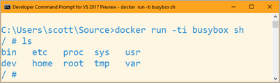 docker run -ti busybox sh