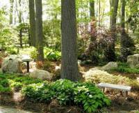 Natural Gardens  Hanselman Landscape and Gardens