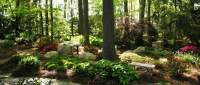 Woodland and Shade Gardens  Hanselman Landscape and Gardens