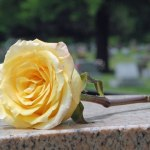 Rose on Pink Granite Stone | Hansen-Spear Funeral Home - Quincy, Illinois