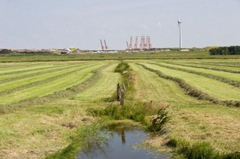 Nauerna. Gemaaid grasland in de Nauernase Polder, bij de stortplaats van Afvalzorg. Op de achtergrond de havenkranen van de Afrikahaven. Nikon D3 • ISO 200 • f/9 • 1/320 @ 70mm. © Fotografie George Burggraaff.