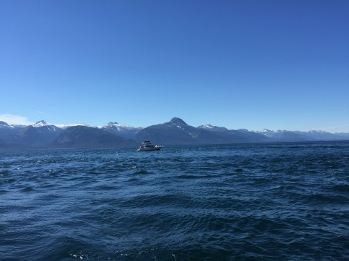 Chatham Strait with the Chilkat Range in background. Mixing zones have ever-changing textures and waves.