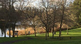 cropped-Buck-lake-park-310.jpg