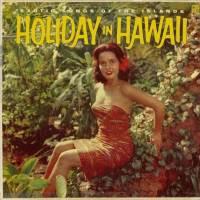 Holiday In Hawaii